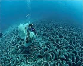 Floors And Decor Orlando Pacific Ocean Trash Vortex