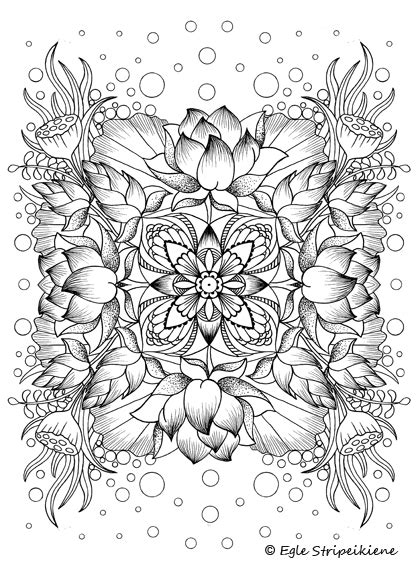 coloring pages for adults calming coloring book for adults colors of calm by egle