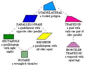 types  quadrilaterals