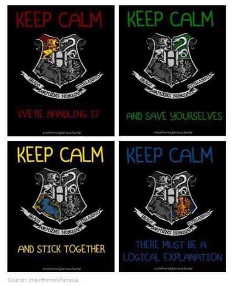 What Hogwarts House Am I by 17 Best Images About Hogwarts Houses On Keep