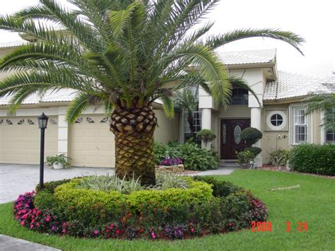South Florida Tropical Landscaping Ideas Our Services Florida Gardening Ideas