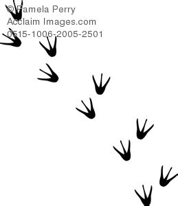bird footprint clipart   cliparts  images