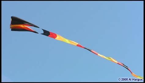 Kite Flying Essay by Essay Writing Kite Flying