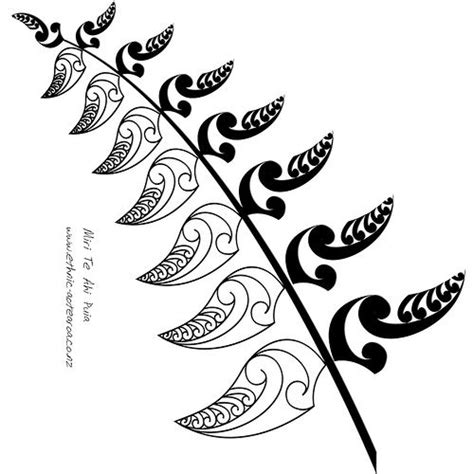 nz fern tattoo designs 27 best maori pattern images on maori patterns