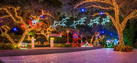 chistmas light snug harbor drive lights palm gardens