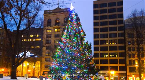 best christmas trees in san diego best things to do in boston in december 2018 boston discovery guide