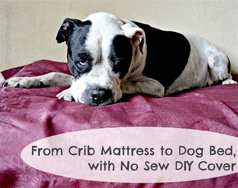 crib mattress bed from crib mattress to bed with no sew diy cover