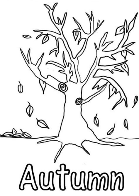 Autumn Tree Coloring Pages Fall Tree Coloring Page