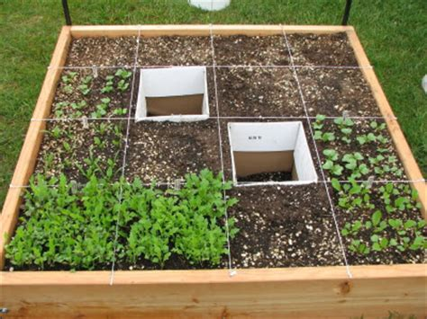 How Many Fit In Square Garden by Square Foot Gardening Rebuttal