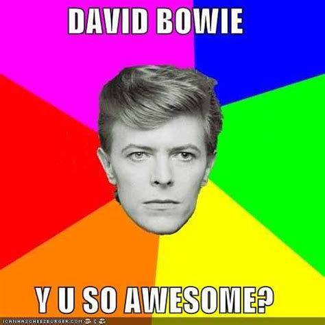 David Bowie Meme - david bowie meme david bowie fan art 28025436 fanpop