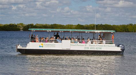 sw boat tours in florida conservancy of southwest florida boat tours must do