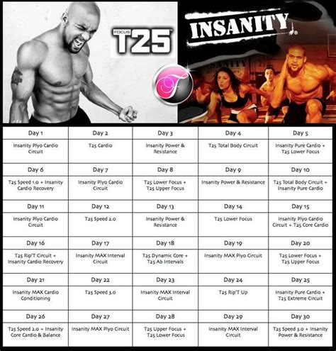 best 25 insanity workout diet ideas on