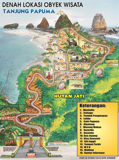 Pantai Papuma Jember   Bromo Travel Guide