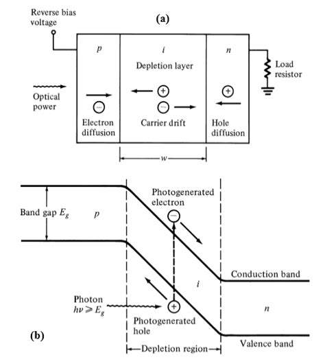 pin diode junction a schematic diagram of a biased pin junction and b
