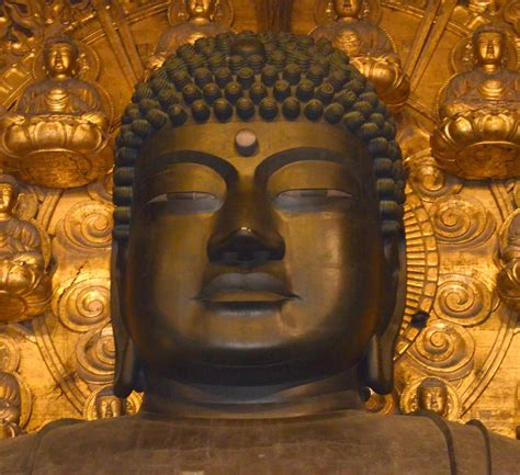 the fortunate buddha series 1 great buddha of nara has only half its reported number of