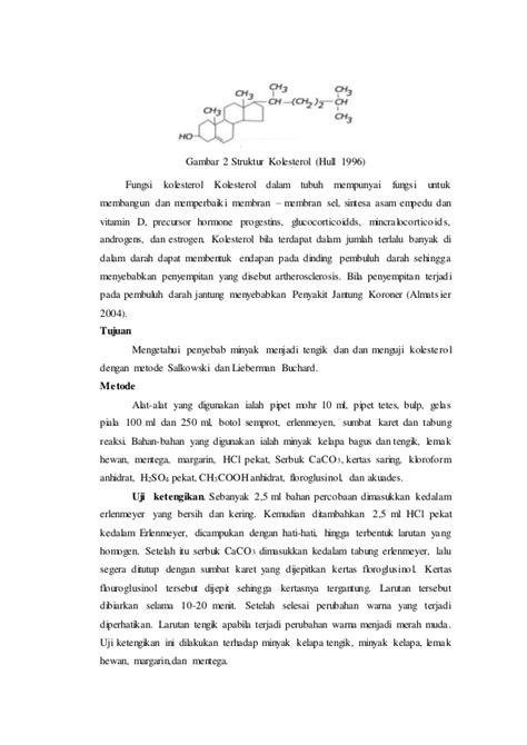laporan praktikum membuat gas karbon dioksida laporan praktikum biokimia