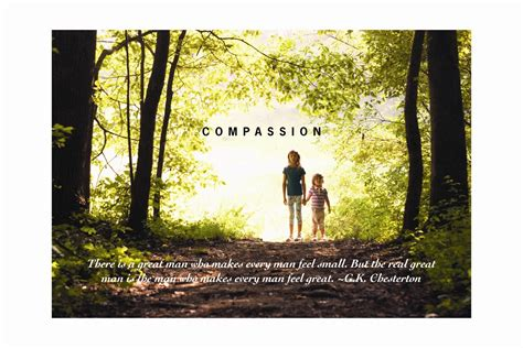 the kindness cure how the science of compassion can heal your and your world books holistics be compassionate towards yourself and