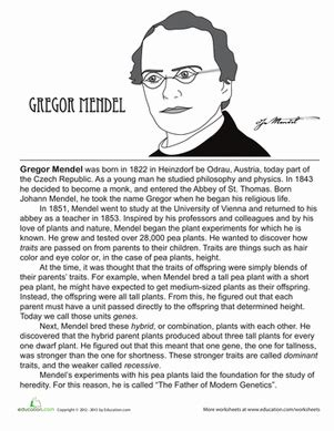 biography reading exercise who is gregor mendel reading practice worksheets and