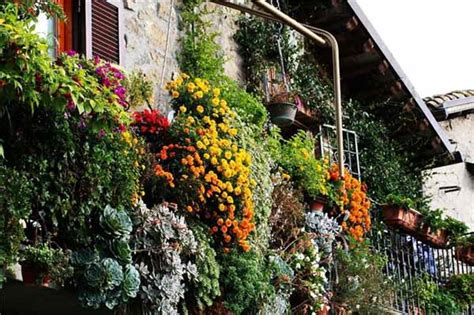 Bright Balcony Decorating with Flowers, 20 Blooming Balcony Designs