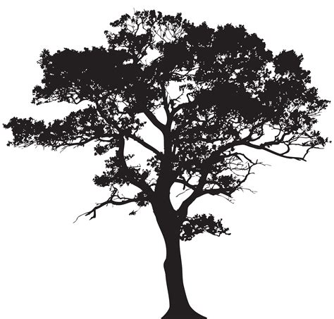 trees silhouettes stock illustration image of color 43384093 silhouette tree png clip image gallery yopriceville high quality images and transparent
