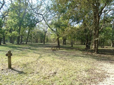 Brazos Bend State Park Cabins by Brazos Bend State Park Primitive Csites Equestrian