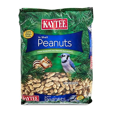 kaytee 100522889 kaytee peanuts in shell for wild birds 5