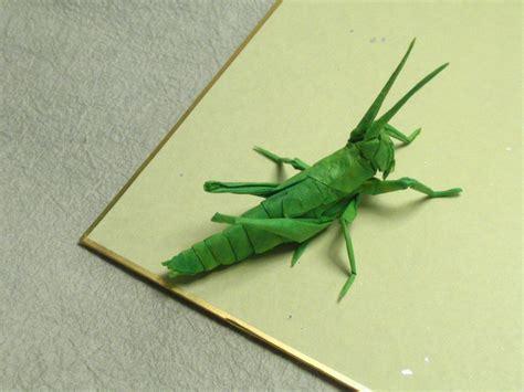 Origami Locust - locust nymph