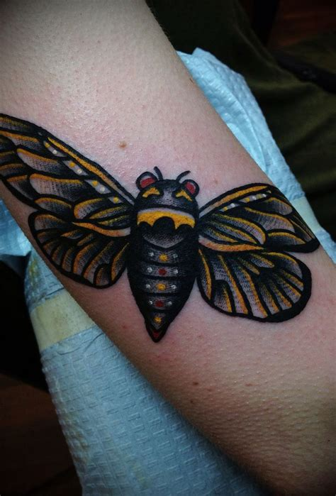 mosquito tattoo 60 best images about insect tattoos on david