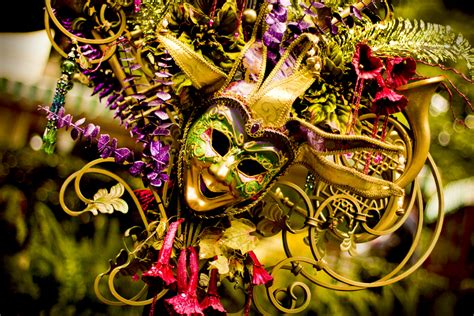 mardis gras for mardi gras ya books set in new orleans the hub