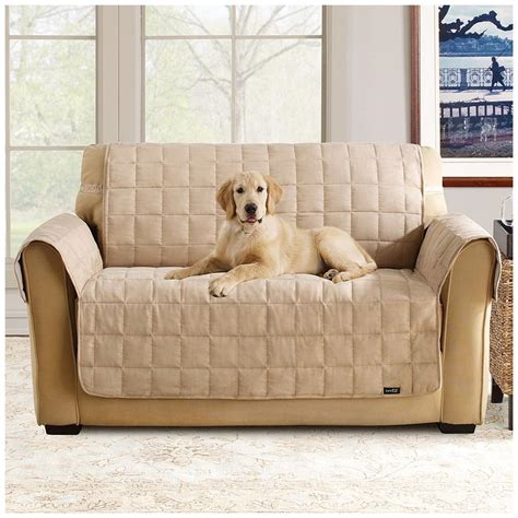 doggie couch covers sure fit 174 waterproof quilted suede sofa pet cover 292842