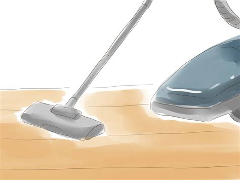 kill fleas in house how to kill fleas naturally with pictures wikihow