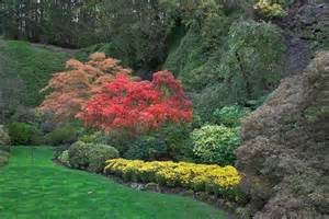 landscaping landscaping ideas knoxville tn