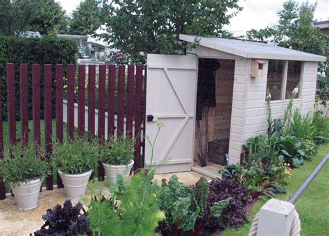 simple garden shed  pent roof  stylish