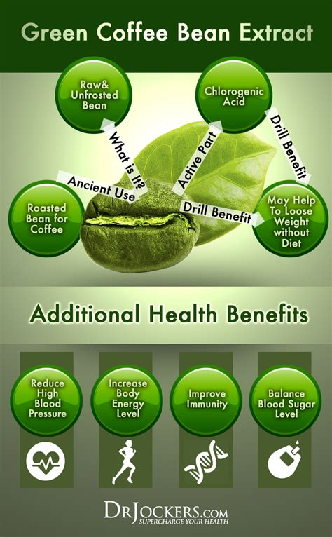 Green Coffee Extract does green coffee bean extract help you lose weight