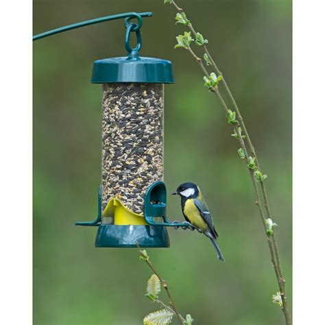 feeding wild birds what ejse besides seed big easy seed feeders bigeasy rwbf co