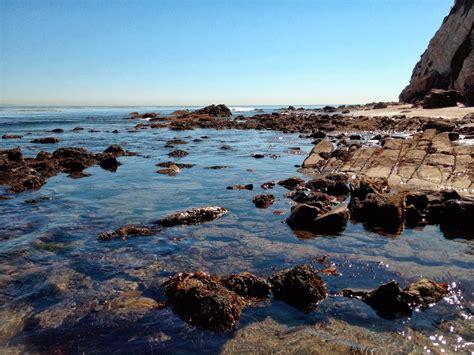 low tide in malibu the malibu post between the tides