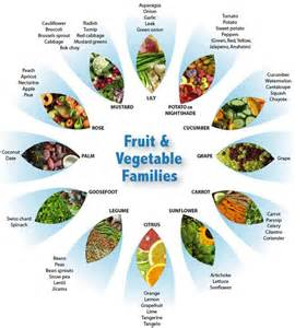 fruit vegetable families health fitness pinterest