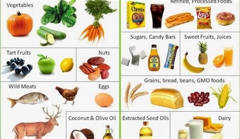 Muscle Building Foods   Help Your Workout
