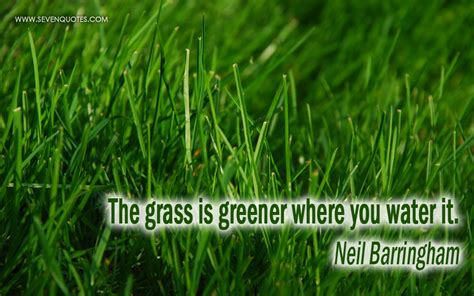 grass cutting quotes grass roots quotes quotesgram