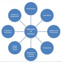 business its environment and objectives assignment and