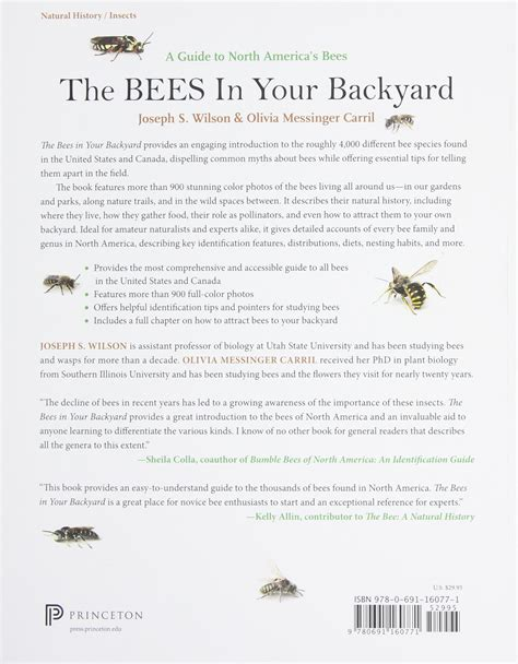 how to raise bees in your backyard bees in backyard gogo papa com