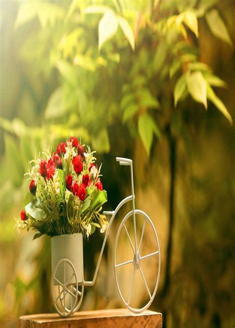 imagenes para celular flores fondos de pantalla de flores fondos de pantalla para