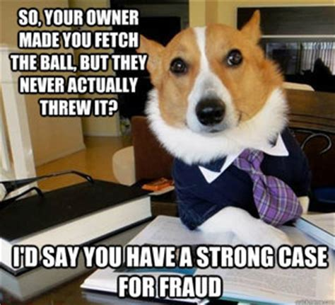 Lawyer Dog Meme - lawyer dog memes quickmeme