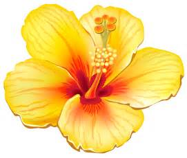 yellow exotic flower png clipart picture gallery