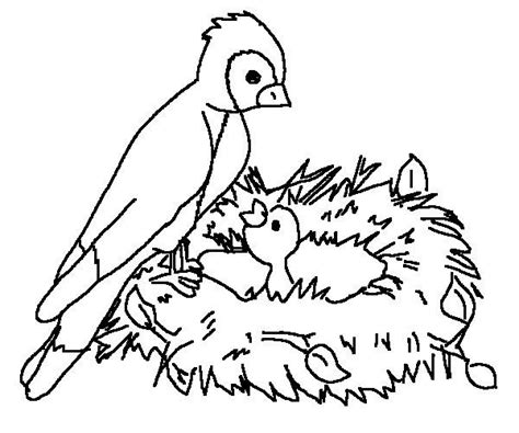 bird coloring pages for toddlers printable bird coloring pages coloring me