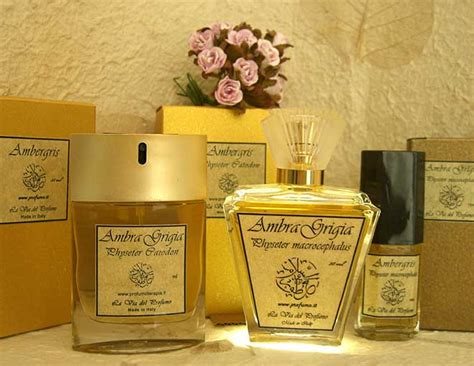 Minyak Wangi Ambergris subhanallah parfum rasulullah masih ada sai sekarang bahkan harganya mencegangkan