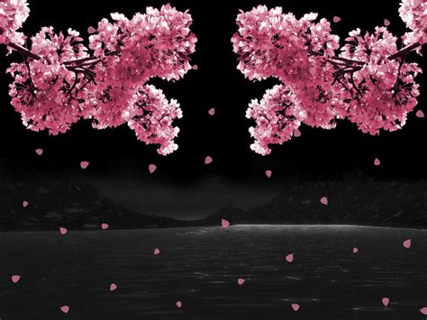 animated flower wallpaper animated graphics ask com image search animated