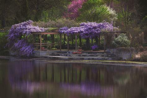 Weddings Powell Gardens Kansas City S Botanical Garden Powell Botanical Gardens