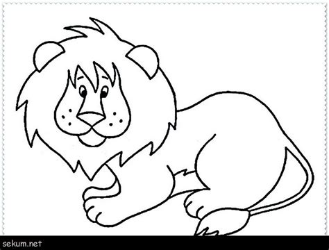 Animal Safari Coloring Pages by Safari Animals Coloring Pages Printable Coloring Page