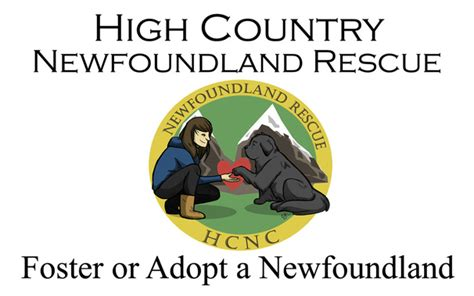 high country puppy rescue hale pet door newfoundland rescue organizations